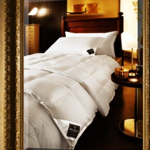 CHALET MEDIUM DUVET LUXURY Одеяло 650 г 100%пух BRINKHAUS;